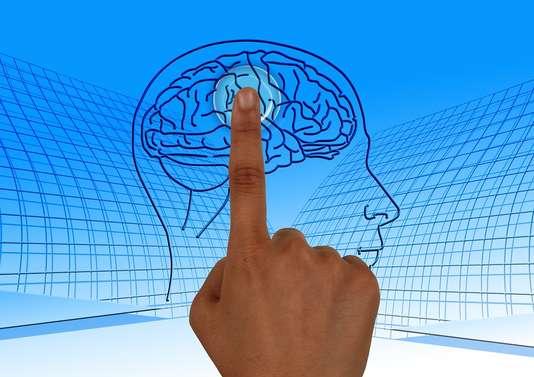 article neurosciences monde