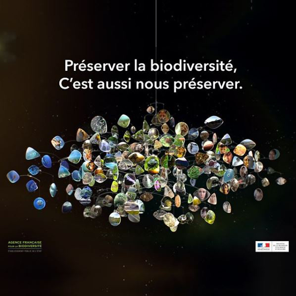 Capture-site-biodiversite