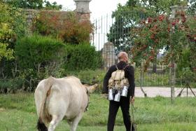 Macadam Vacher - Co Cie